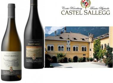 Castel Sallegg – Vini di lunga tradizione su un terroir unico come quello di Caldaro